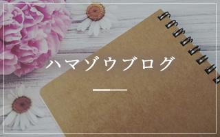 ハマゾウブログ